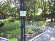 素敵な絵が沢山ありますので、ハーブ園でご覧下さい♪