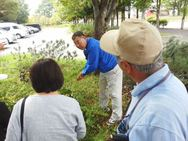 こちらは公園の植栽で、講師の方がイタズラしていた枝の変化を解説。
