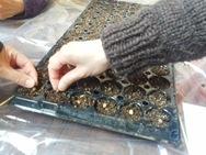 大きな種は1粒ずつ土に置いて、種まき終了です!
