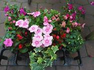 今回の花材はこちら!イメージカラー『ピンク』で準備しました☆