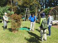 押さえの縄、曲がり竹など支柱の立て方などなど。