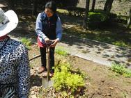 まずは低木。掘り方、掘る位置などの解説をしながら…