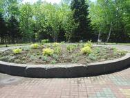 移植完了☆ 来月はガーデンで一年草の植え込みです♪