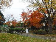 秋深まる恵庭ふるさと公園
